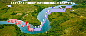 Institutional Money Flow by NeverLossTrading